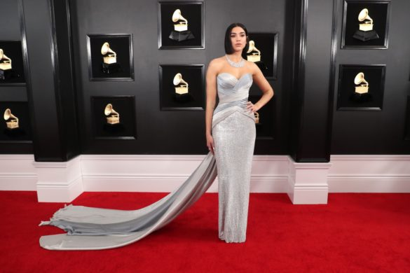 Grammy Awards 2019 -Los mejores Looks!